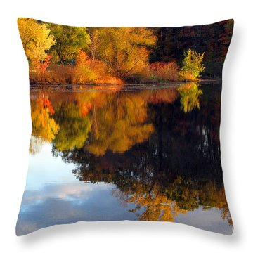 Fall Scene Throw Pillow by Olivier Le Queinec