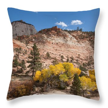 Throw Pillow featuring the photograph Fall Season At Zion National Park by John M Bailey