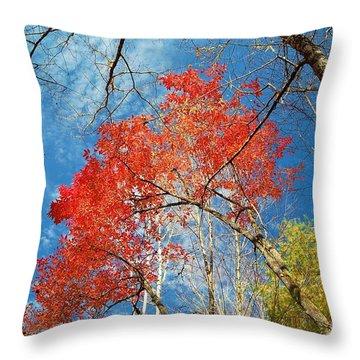 Fall Sky Throw Pillow