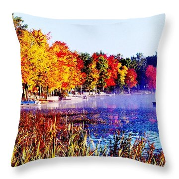 Throw Pillow featuring the photograph Fall Splendor Of Mid-michigan by Daniel Thompson