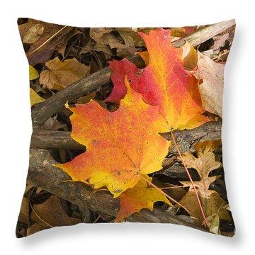 Fall Throw Pillow by Steven Ralser
