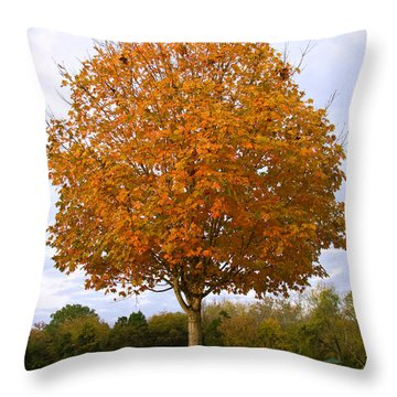 Fall Sugar Maple Throw Pillow by Melinda Fawver