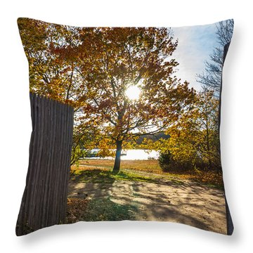 Fall Through The Gate Throw Pillow