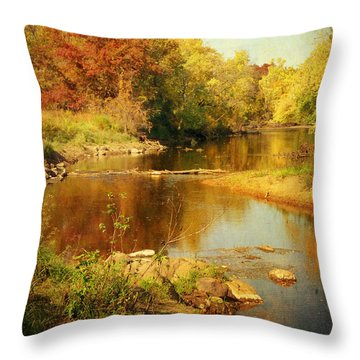 Fall Time At Rum River Throw Pillow