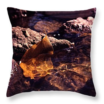Fall Throw Pillow by Travis Burgess