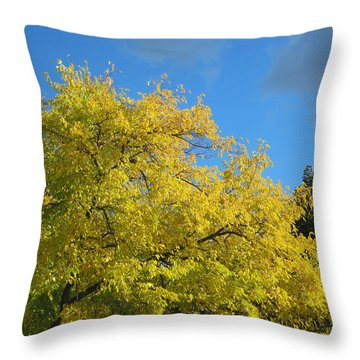 Throw Pillow featuring the photograph Fall Tree by Mary Bedy