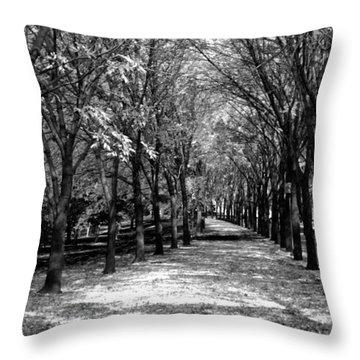 Fall Tree Promenade Landscape Throw Pillow