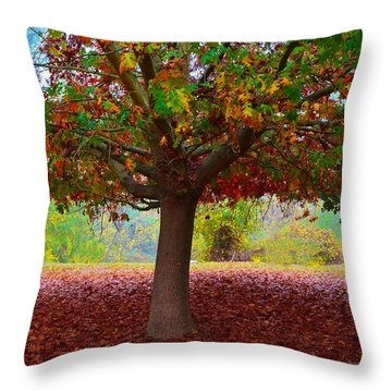 Fall Tree View Throw Pillow