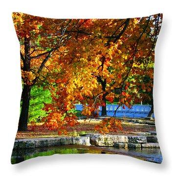 Fall Trees Landscape Stream Throw Pillow