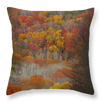 Throw Pillow featuring the photograph Fall Tunnel by Raymond Salani III