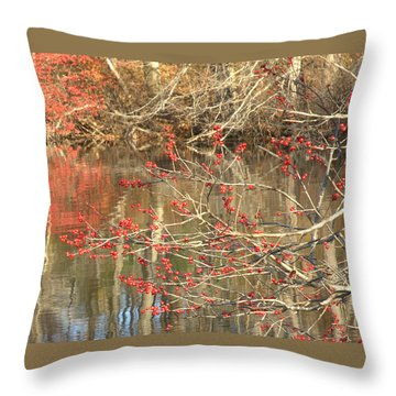 Fall Upon The Water Throw Pillow