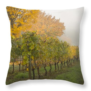 Fall Vineyard Colors Throw Pillow by Jean Noren