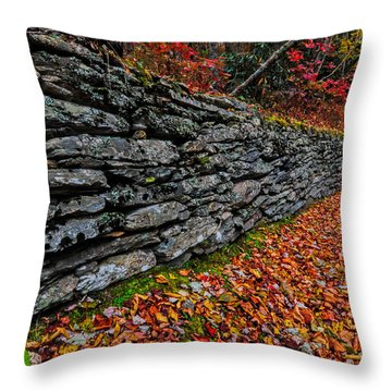 Fall Wall Throw Pillow