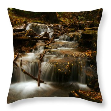 Fall With Grace Throw Pillow