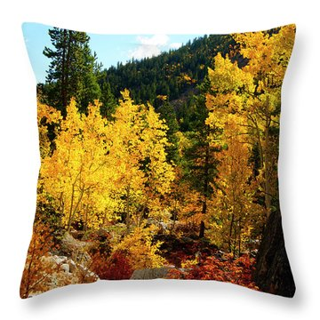 Fall2 Throw Pillow