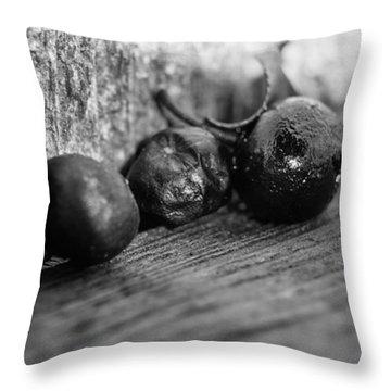 Fallen Berries Throw Pillow