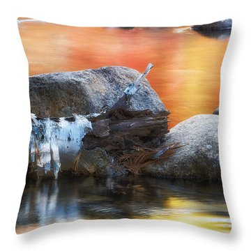 Fallen Birch Throw Pillow