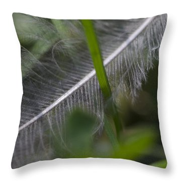 Fallen Feather Throw Pillow