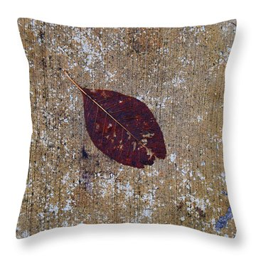 Throw Pillow featuring the photograph Fallen by Jani Freimann