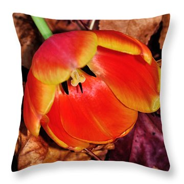 Fallen Throw Pillow by Kaye Menner