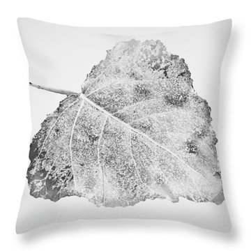 Fallen Leaf In Bw Throw Pillow by Greg Jackson