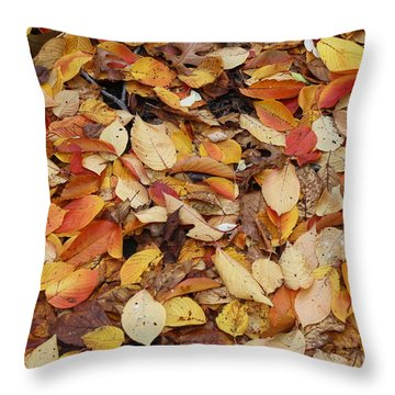 Throw Pillow featuring the photograph Fallen Leaves by Dora Sofia Caputo Photographic Art and Design