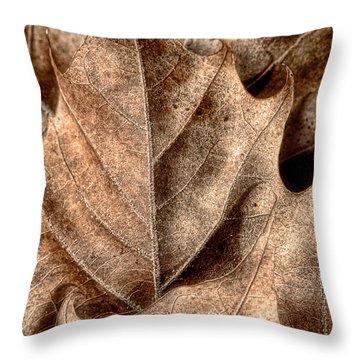 Fallen Leaves I Throw Pillow