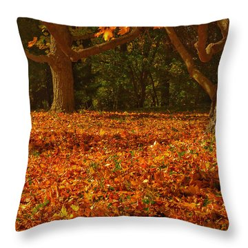 Fallen Leaves IIi Throw Pillow