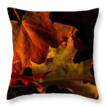 Fallen Leaves Throw Pillow by Judy Wolinsky