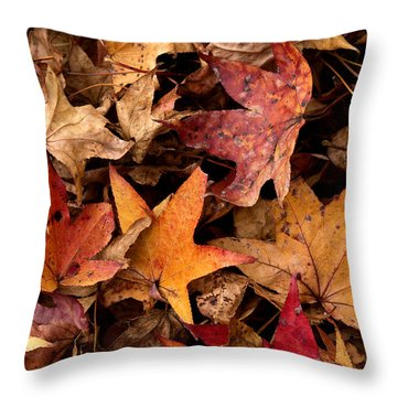 Fallen Leaves Throw Pillow by Rebecca Davis
