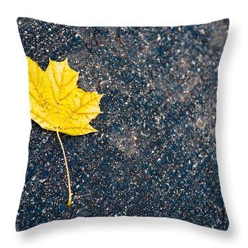 Fallen Throw Pillow by Sebastian Musial