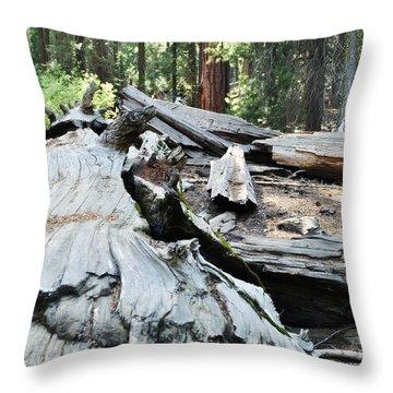 Fallen Sequoia Trail Of 100 Giants II Throw Pillow