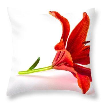 Fallen Tiger Lily Throw Pillow