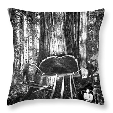 Falling A Giant Sequoia C. 1890 Throw Pillow