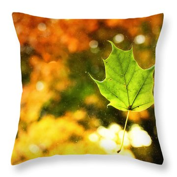 Falling Leaf Throw Pillow