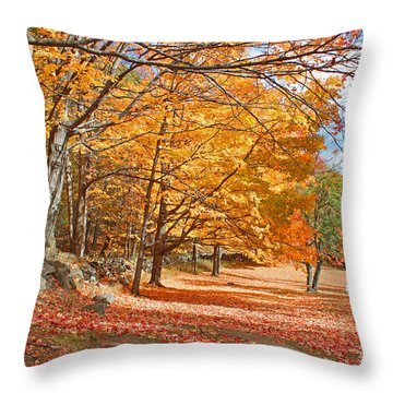 Falling Leaves On The Road To Bentley Throw Pillow by Rita Brown