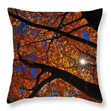 Falling Star Throw Pillow