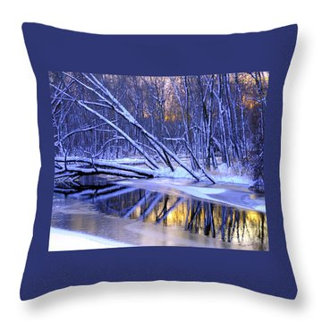 Throw Pillow featuring the photograph Falling by Terri Gostola