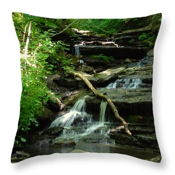 Throw Pillow featuring the photograph Falling Water by Alan Lakin