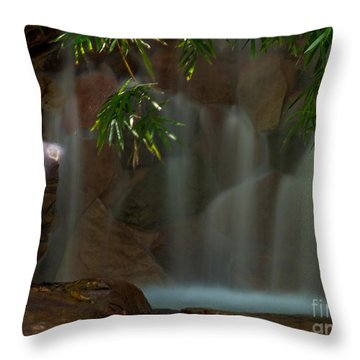 Falling Water Two Throw Pillow