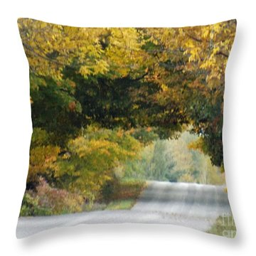 Falls Archway  Throw Pillow by Brenda Brown