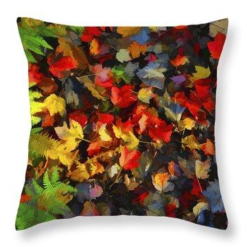 Falls Color Palette Throw Pillow by Dan Friend