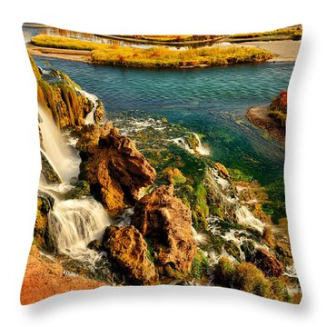 Throw Pillow featuring the photograph Falls Creek Waterfall by Greg Norrell
