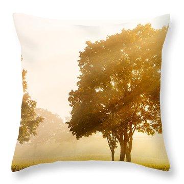 Falls Delight Throw Pillow