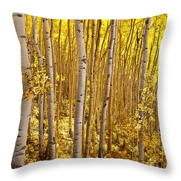 Throw Pillow featuring the photograph Fall's Golden Light by Steven Reed