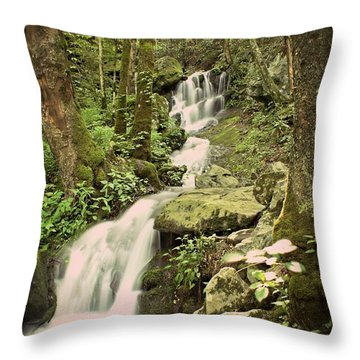 Falls In The Smokies Throw Pillow by Marty Koch