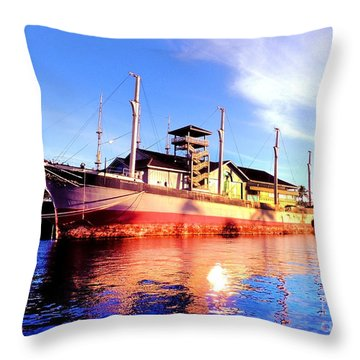 Falls Of Clyde Throw Pillow