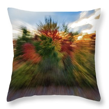 Falls Rush Throw Pillow by Michael Hubley
