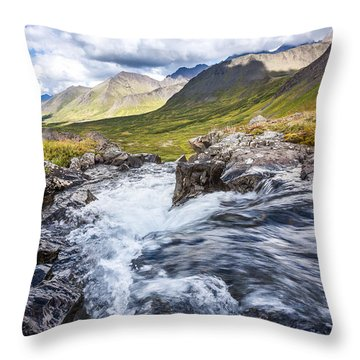 Falls With A View Throw Pillow