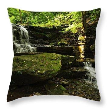 Throw Pillow featuring the photograph Fallsbrook Falls by Debra Fedchin